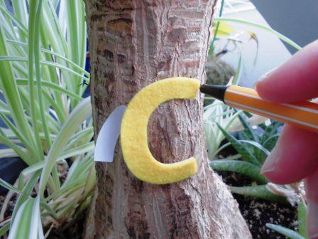 Malt die Kontur des Buchstabens auf den Elefantenbaum auf