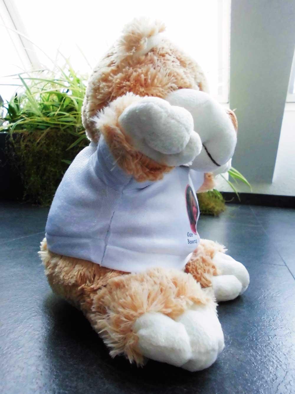 Seitenansicht Eures Teddybären mit Foto