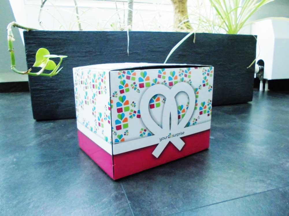 Euer Kuscheltier mit Foto - Lieferung in schönem Geschenkkarton